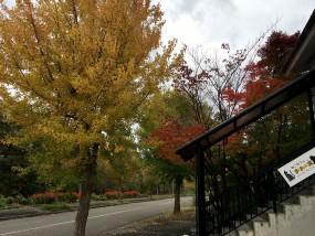 2016秋の景色